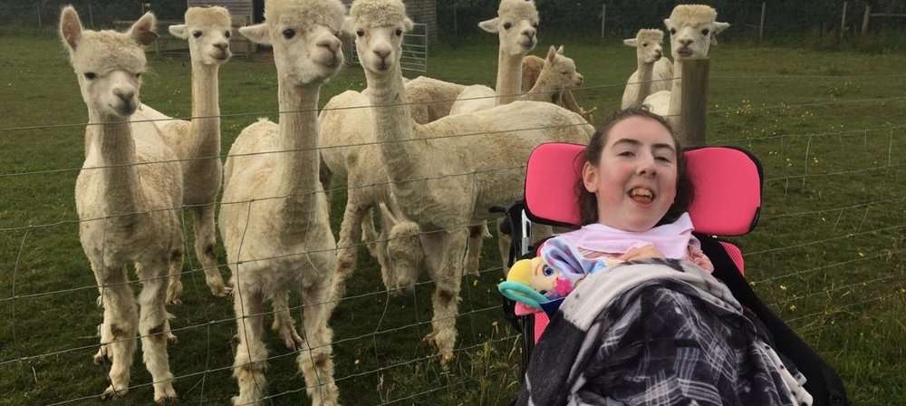 Shannon in front of a field with llamas in backfround